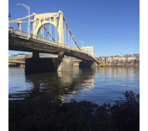 This view of the Rachel Carson Bridge can be seen while walking along the trail. Photograph by Emily Bennett