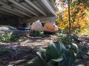 At the beginning of the Wharf Landing trail, just underneath the Smithfield Street Bridge, is a collection of washed-up trash and litter of varying types scattered among the natural tree branches and leaves.